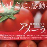 フルーツトマト、高糖度トマト、濃縮トマト、どんなトマト??