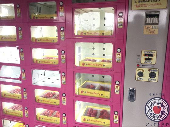 岐阜県の超特大の超高級いちご「美人姫」の特長や産地をレポート_いちごの自販機