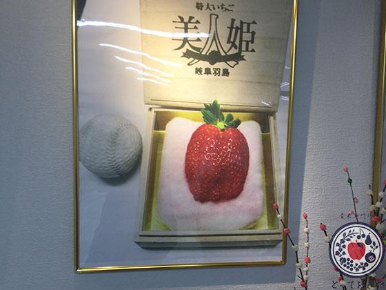 岐阜県の超特大の超高級いちご「美人姫」の特長や産地をレポート_一粒5万円