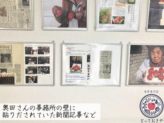 岐阜県の超特大の超高級いちご「美人姫」の特長や産地をレポート_新聞記事の切り抜き