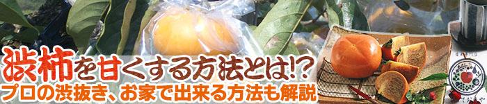 渋柿を甘くする方法とは!プロの渋抜き、お家で出来る方法も解説