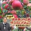 岩手県JA江刺の「サンふじりんご」について青果部長が語る!