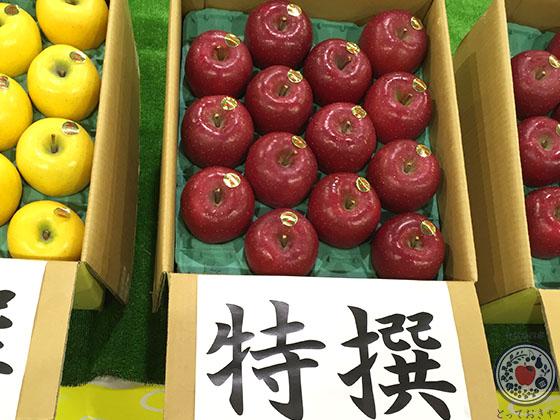岩手県JA江刺のサンふじりんご_特選品