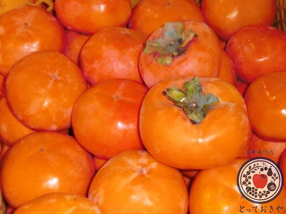陽豊柿をご存知ですか?大きい!赤い!甘い!三拍子揃った幻の柿_色が良い柿