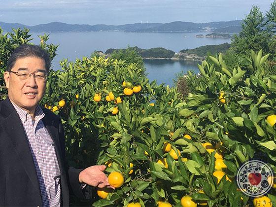 柑橘類の種類をまとめて徹底解説!国産柑橘も輸入柑橘も_みかんの樹と杉さん