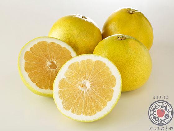 柑橘類の種類をまとめて徹底解説!国産柑橘も輸入柑橘も_スイーティー