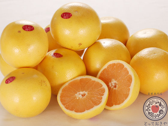 柑橘類の種類をまとめて徹底解説!_輸入柑橘グレープフルーツ