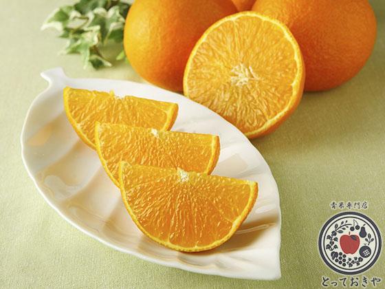 他県では使用できない柑橘類の名前_紅まどんな