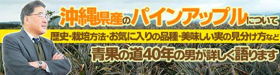 沖縄パインアップルの品種を青果の道40年の男が詳しく語ります