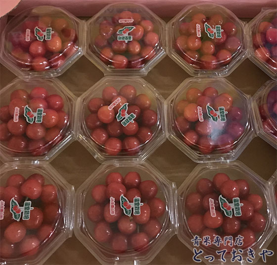 さくらんぼの品種それぞれ豆知識と旬の時期を青果担当が語る!_山形美人