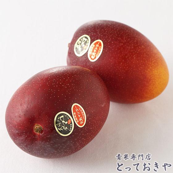 平成30年に20周年を迎える宮崎高級マンゴー「太陽のタマゴ」の話_太陽のタマゴ実
