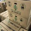 熊本県産の西瓜について青果担当が語ります