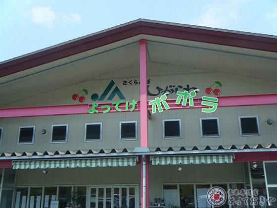 山形県サクランボ産地訪問記_JAひがしねの「よってけポポラ」