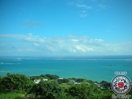 青果部長の沖縄訪問記_石垣島と海