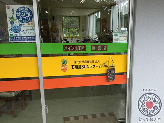 青果部長の沖縄訪問記_石垣島SUNファーム
