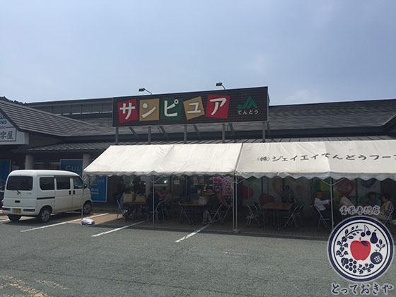 山形産地訪問_おすすめスポット_サンピュア