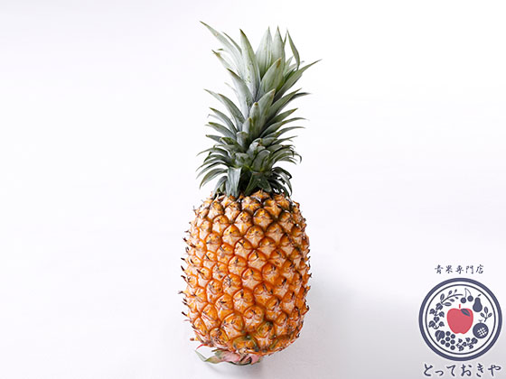 沖縄のとっておきのパイナップル「ゴールドバレル」とは_形状