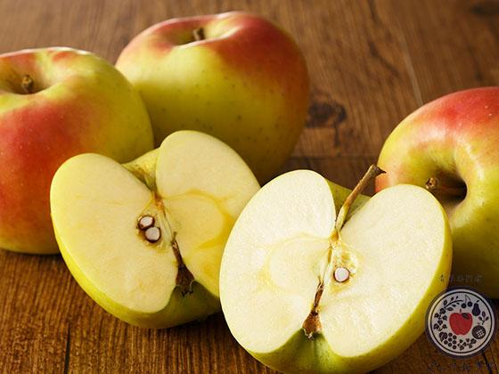 あなた好みのりんごはどれ?りんごの種類・味の特徴レクチャーします_ぐんま名月