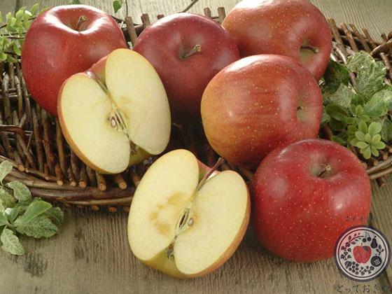 あなた好みのりんごはどれ?りんごの種類・味の特徴レクチャーします_サンふじ