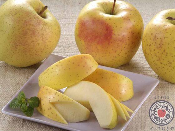 あなた好みのりんごはどれ?りんごの種類・味の特徴レクチャーします_金星