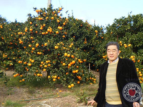 冬の果物まとめ一覧!青果担当者が豆知識満載で語る果物図鑑
