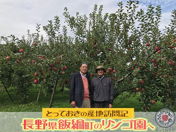 動画あり!長野県飯綱町の上野さんのリンゴ園へ。とっておきの産地訪問記