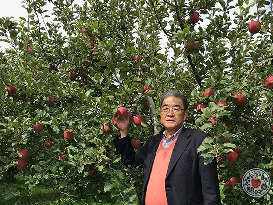 長野県飯綱町の上野さんのリンゴ園へ。とっておきの産地訪問記_りんごの樹と杉さん