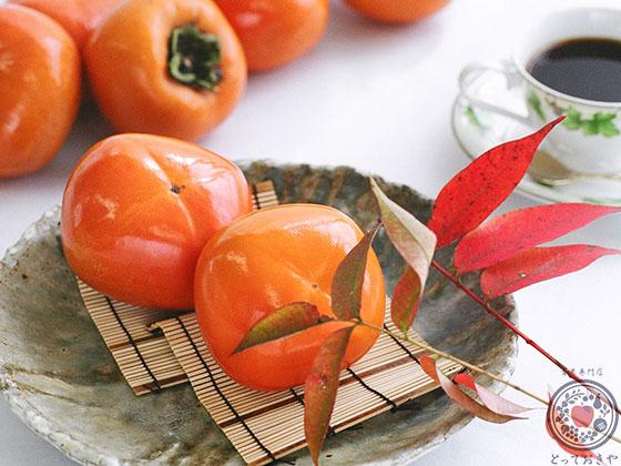 和歌山県産「紀の川柿」_柿イメージ