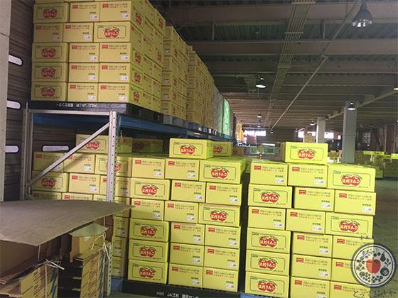 岩手県JA江刺のサンふじりんご_市場にたくさん