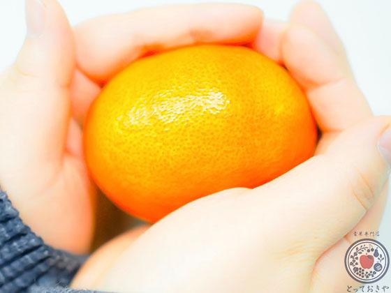 愛媛の柑橘「甘平」とは_旬の時期はいつ
