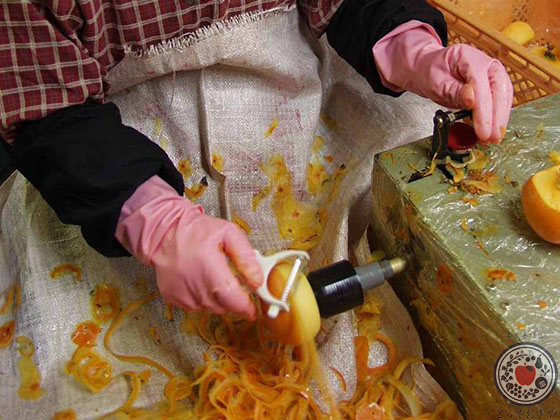 あんぽ柿とは_産地で皮むき作業