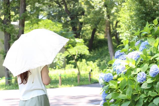 母の日_日傘