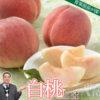 白桃とは。白桃の特長、産地、旬、人気の品種を青果部長が語る!